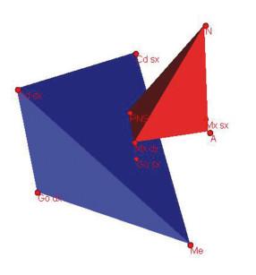 3. Rappresentazione grafica  dei volumi dei solidi di costruzione  dei mascellari.
