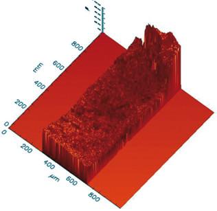 14. Immagine 3D della superficie analizzata.