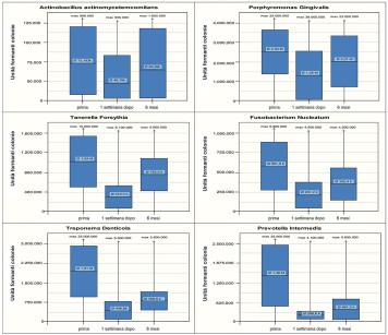 1b. Evoluzione dei batteri entro i primi 6 mesi dall'inizio della terapia.
