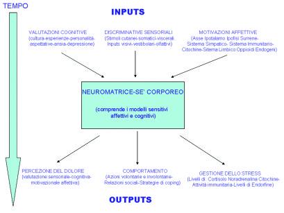 2. Caratteristiche della neuromatrice secondo Melzack.