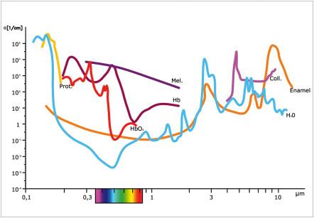 1. Assorbimento delle diverse lunghezze d'onda laser nei tessuti orali.