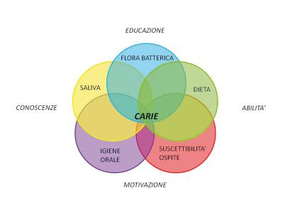 4. Cariogramma dei fattori concorrenti nell'eziopatogenesi della carie dentaria (Madau e Strohmenger, 2003).