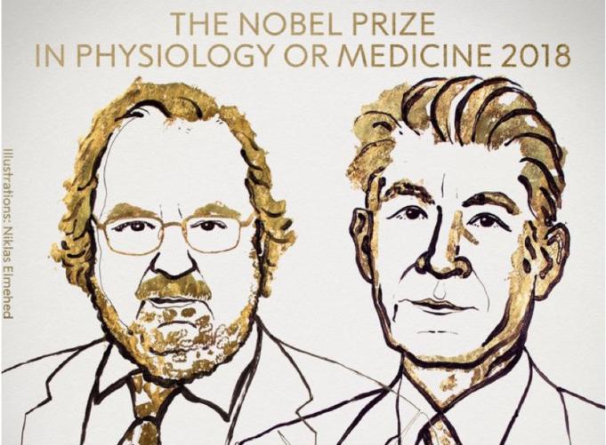 DM_il dentista moderno_premio nobel_immunologia