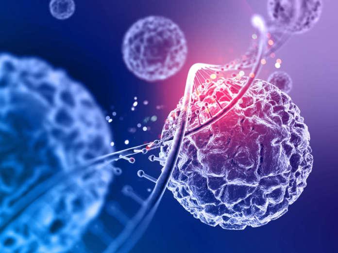 DM_il-dentista-moderno_cellule-chemosensoriali-batteri-gengiva.