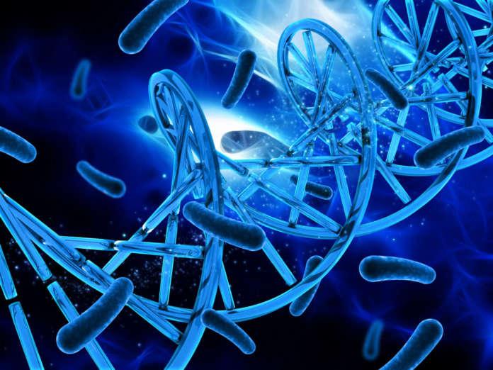 DM_il-dentista-modermo_antibioticii_terapie antibiotiche