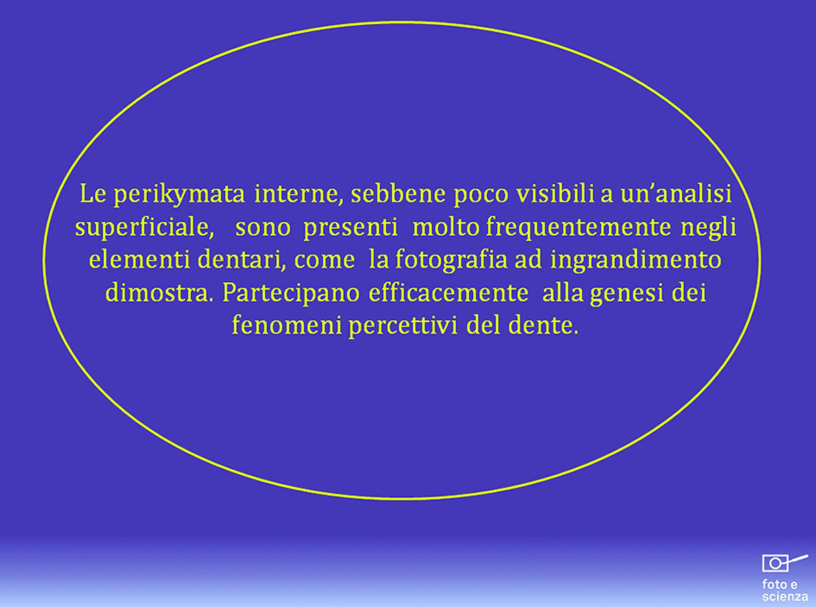 dm_2014_010_loiacono014