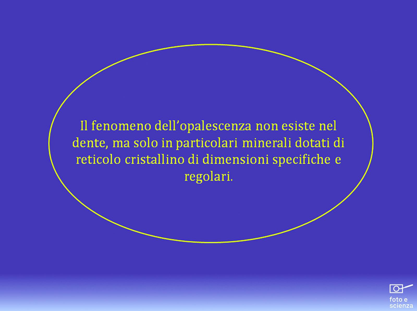 dm_2014_010_loiacono037